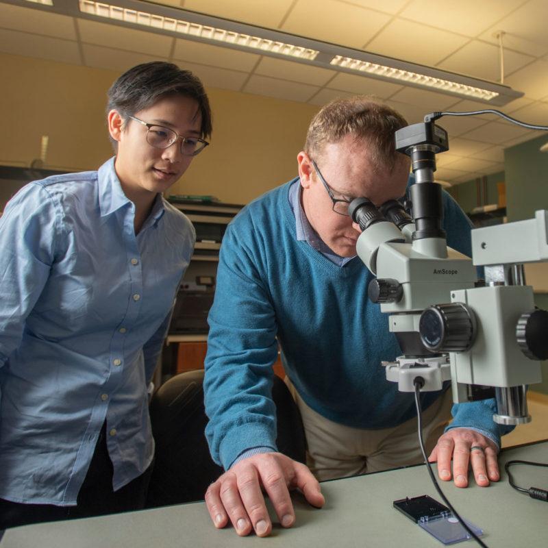 Thomas O'Sullivan and Alicia Wei using a microscope