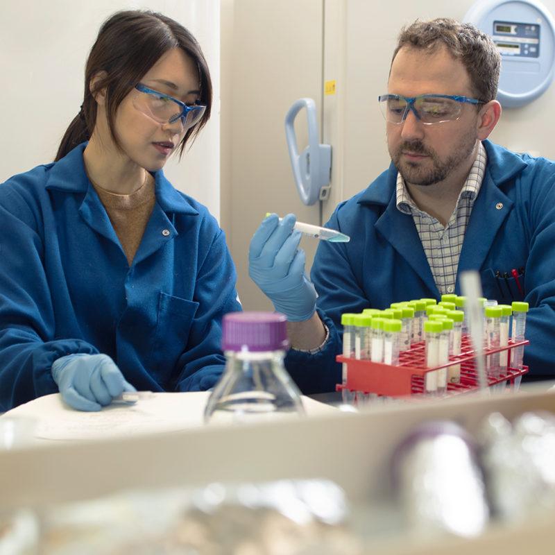 Prof. Matthew Webber and graduate student in his lab